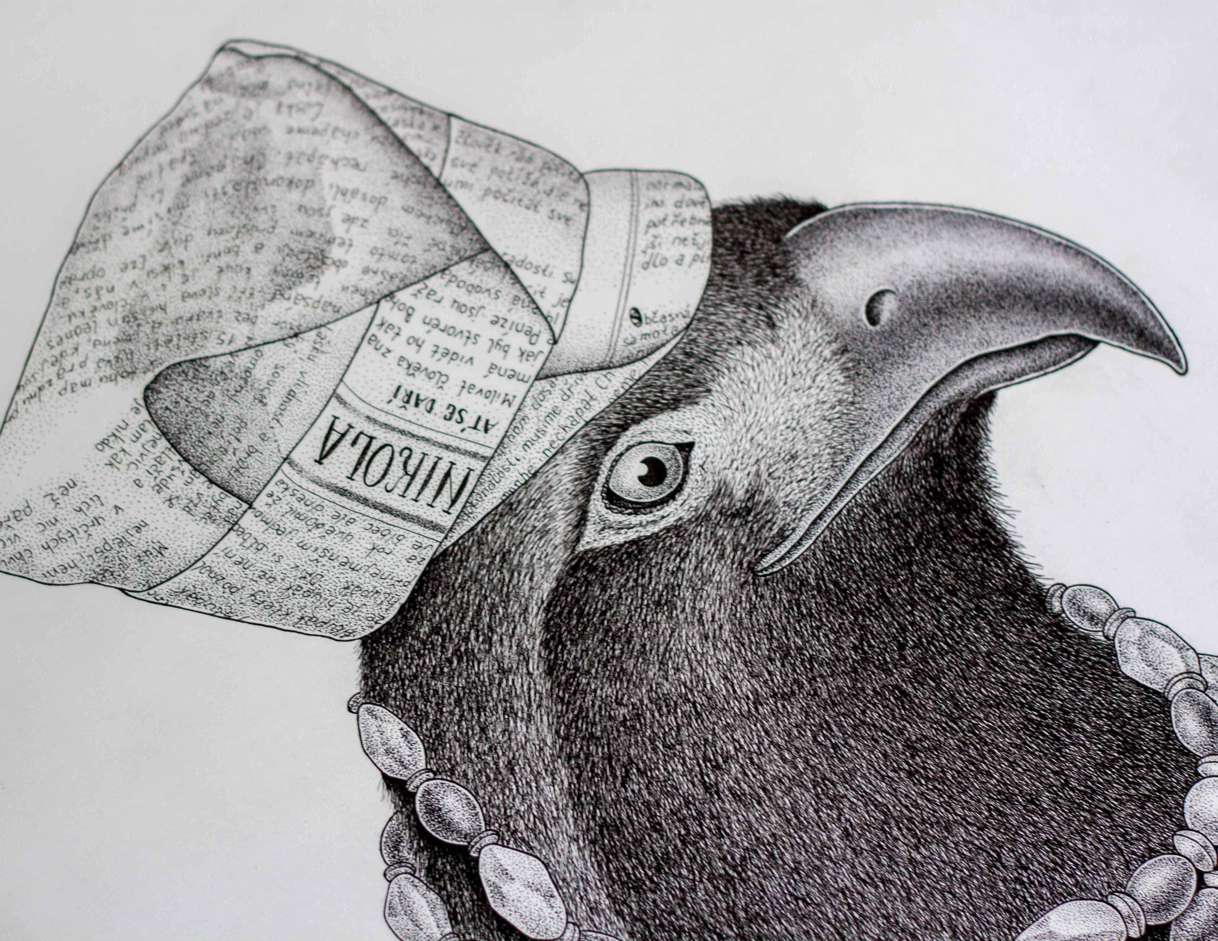 black-raven2preview